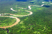 Anuncios clasificados de Amazonas