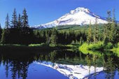 Anuncios clasificados de Oregon